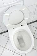 WC Abfluss