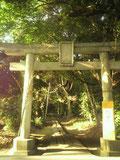 宗像神社鳥居