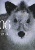 「週刊日本の天然記念物」第6号