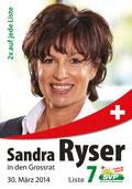Wahlplakat 2014