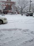 事務所前駐車場ですがどんどん積もっています