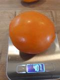 Valencia, oranggelbe, runde Tomate. Bild Bio Gärtnerei Kirnstötter