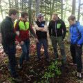 Waldpädagogik vor Ort