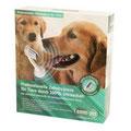 Zahnsteinentfernung Hund ohne Narkose