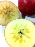 フルーツギフト 蜜入りリンゴ