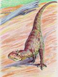 Bild eines Majungasaurus