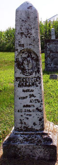 Gravestone for Vandiver Banks (1804-1876), patriarch of the Banks family in Hire Township.