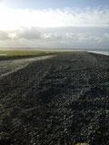 Sur la route blanche du Hourdel en Baie de Somme