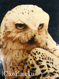 2001年入選作品 白フクロウ