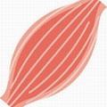 筋肉のイメージ画像