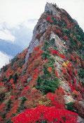 石鎚山 1982㍍