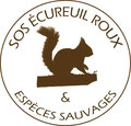 SOS Ecureuils Roux