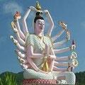 Koh Samui Gallery -Click Here -