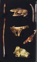Fragments de crochet de propulseurs préhistoriques