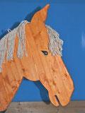 Irland Pony Calmi