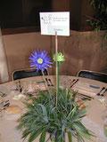 mariage bambou vert violet