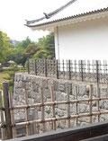 駿府城公園の一画