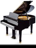 ペトロフピアノ P159 Bora Standard