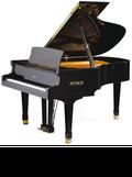 ペトロフピアノ P194 Storm Standard