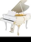 ペトロフピアノ P173 ROKOKO
