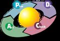 Bild: Darstellung des PDCA - Zyklus