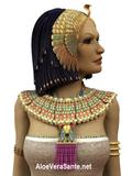 Il est dit que les yeux de Cléopâtre devaient beaucoup de leur l'éclat à un collyre à base d'aloès