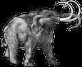 Bild eines Mammuts