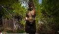 Film über Yoga