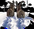 Die zwei bekanntesten Steinböcke aus Graubünden - Verfolgen Sie im Hörspiel jeden Schritt von Gian und Giachen