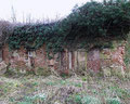 The walled garden of Elmdon Hall, now a nature reserve
