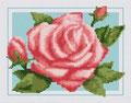 Роза (2)