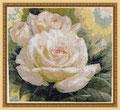 Розы белые. Вышила Юлия Лопаскина