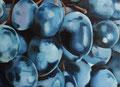 Raisins noirs 50 x 70  23/05/2015
