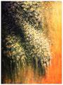In voller Blüte (80x100)