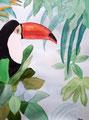 Toucan, aquarelle de Maëlys, 11 ans