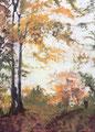 2015 Herbst2 105x146cm-verkauft-