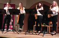 Konzert in der Alten Kirche in Waldbüttelbrunn am 16.11.19 (Foto: © Reinhilde Keller)