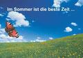 Sommer Schmetterling auf Wiese