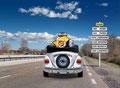 Sommer Käfer-Cabrio