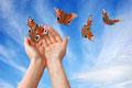 Sommer Hände mit Schmetterlingen