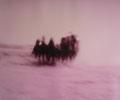 Dunja Evers - Cowboy # 7 / 2007 / c-print handcolored on aluminum / 46 x 58 cm
