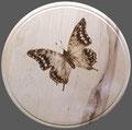 Essbrett Motiv Brandmalerei Schmetterling