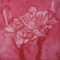 """Thomas Landt - """"Die Feuer-Lilie"""" - Aquatinta-Farb-Radierung auf Bütten - 20x20 cm - 2008 - Auflage 3/10 - Sylt"""