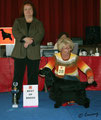 Happiness made in Austria - Deutscher Jugendchampion, Clubjugendsiegerin 2008, mm. Rassebester-BOB, Best in Show-BIS