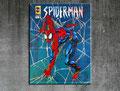 - spiderman - Größe 80 x 60 cm , Sylvio Zornsch, paintings, Bilder