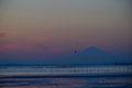 冬の江川海岸