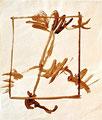 Ohne Titel; Technik: Nescafé; Datum: Ohne Datum; Format (HxB): 35 x 30 cm