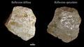 Echantillon BDX 8020. Fouilles de l'Ak Saray de 1996.  Conservé au Musée Amir Temur de Shahrisabz (photo : F.Moncada, 2003)