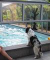 Mein Freund Peter schwimmt im Wasser, der darf das.