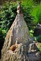 Familie Erdmann im Leipziger Zoo